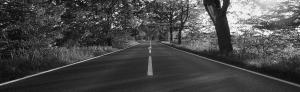 kilbridecoaches Route
